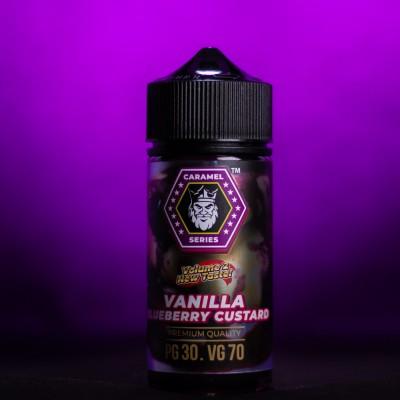 Жидкость Flamingo - Vanilla Bluberry Custard 100ml